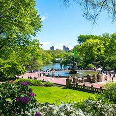 Things to See and Do - The Official Website of Central Park NYC Monuments, memorials, and recreational sites to be discovered amidst the flowers and trees of Central Park's world-famous landscape. Gardens By The Bay, Small Gardens, Park In New York, New York City, New York Must See, Central Park Map, Wisteria Pergola, Conservatory Garden, Forever Green