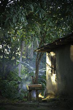 Costa Rican Village House Costa Rica