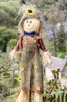 Quaint English customs - a village scarecrow exhibition Scarecrows For Garden, Fall Scarecrows, Fall Halloween, Halloween Crafts, Primitive Fall Crafts, Fall Yard Decor, Scarecrow Crafts, Scarecrow Ideas, Manualidades Halloween