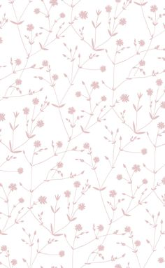 Illalla Wallpaper Cream/Dusty Rose