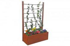 """exklusive Edelrost Sichtschutzwand Rankhilfe mit Pflanzgefäß  Die Sichtschutzwand Rankhilfe mit Pflanzgefäß ist eine tolle Möglichkeit, einen """"grünen"""" Sichtschutz mit seinen Lieblingspflanzen zu gestalten  Dank dem integrierten Pflanzgefäß haben Sie zusätzlich die Möglichkeit, ein kleines Blumenbeet oder Gemüsebeet mit anzulegen.  Bitte wählen Sie die für Ihren Untergrund passende Sichtschutzwand Befestigung aus.  Größe:      Höhe: 160 cm     Breite: 100 cm     Materialstärke: 2 mm Preis…"""