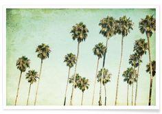 Palm Trees en Affiche premium par Mareike Böhmer | JUNIQE