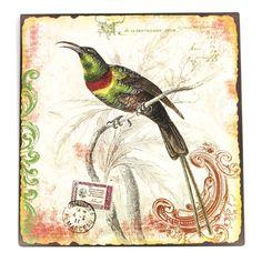 Pássaro Selo Verde