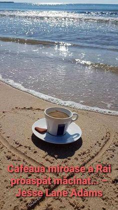 Coffee Art, V60 Coffee, Coffee Break, Coffee Time, Good Morning Beautiful People, Dream Beach Houses, Tea Cup Set, Beach Photography, Coffee Maker