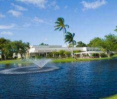 Lynn University in FL Lynn University, Princeton Review, State Of Florida, Beauty Shots, Fresh Water, Schools, Lush, College, Mansions