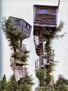 Lolys Enríquez - Google+ - Escaleras de caracol.