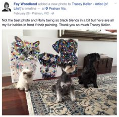 pet portrait dog cat tracey keller artwork testimonials