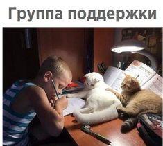 #прикольные картинки Мемы.