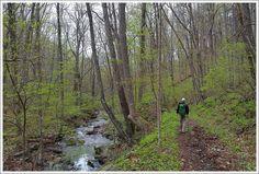 Shenandoah National Park - Cornelius Creek 6 mile #hiking