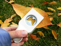 Ever thought about using your paper punches with beautiful fall leaves? Learn how to preserve them too with Grow Creative.