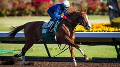 California Chrome...he's the favorite to win the Derby...but can he do it?