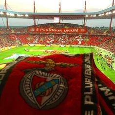 Estádio da Luz, Benfica Football Stadiums, Football Soccer, Football Players, Ultras Football, Portugal, Target, House, Stadium Of Light, Canoeing