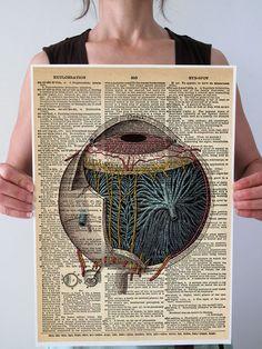 Eye Antique Anatomy Optometry Art Print