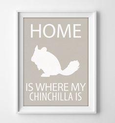 "8x10"" Chinchilla Wall Art, Chinchilla gift, Chinchilla Decor, Chinchilla Print, Chinchilla Pet, Chinchilla Christmas, Chinchilla Birthday by pigknit on Etsy"
