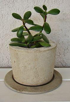 Maceta de cemento natural con base