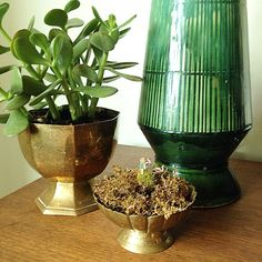 Thrift store finds repurposed and style #shelfie. #vintage #styling #lamp #brass #planter #grouping #decor