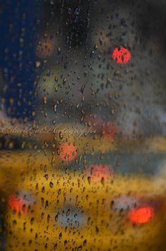 NYC rain.  Photo by Bonnie C.  of BlackCatPhotographs.