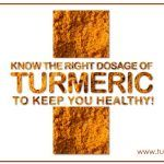Ideal Turmeric Dosage - How Much Turmeric Can You Take in a Day? Turmeric Milk Benefits, Raw Turmeric, Fresh Turmeric Root, Turmeric Paste, Turmeric Extract, Turmeric Curcumin Dosage, Can You Take, Healing Herbs, Epilepsy Seizure