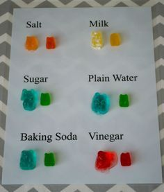 Homeschool Science – Gummy Bear Osmosis is just one of the PHENOMENAL articles in Homeschool.com's most recent e-Magazine. If you haven't checked it out, you might want to give it a look-see!   We are big science fans in this house.  We never miss an opportunity to do a hands on science experiment.  I thought […]