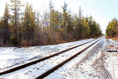 Railroad Photography Winter Train Tracks by FeatherWindStudio