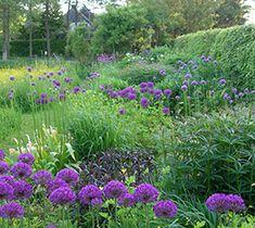 Groenstudio De natuurtuin   De natuur in de tuin