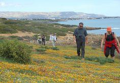 Cammini in Sicilia: da Ragusa Ibla a Marzamemi