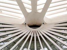 Novo museu brasileiro: o Museu do Amanhã - Porta Adentro