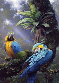 Harro Maass - Birds, Mammals, Surrealistic Wildlife