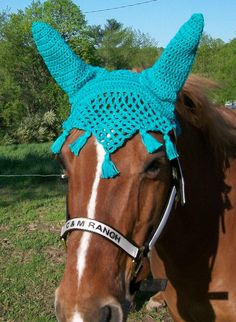 This is Simply Fabulous!  Horse Fly Bonnet. Etsy.