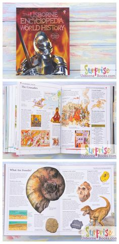 The usborne book of world history sample pages