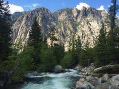 The Roaring River in Kings Canyon National Park [OC] [3264 x 2448]