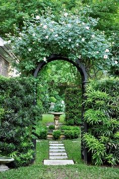 New Dawn roses cover an arbor leading into the garden....