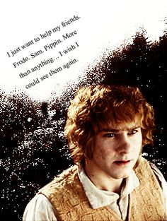 """""""I just want to help my friends. Frodo,Sam,Pippin. More than anything...I wish I could see them again."""""""