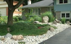 1000 images about front yard landscaping on pinterest for Grass alternatives for backyards
