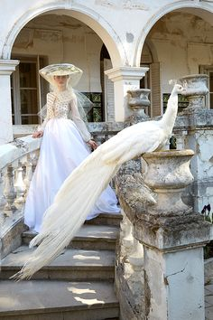 Fernando Claro Haute Couture on Behance Al White, Bridal Collection, Fashion Art, Fashion Photography, Art Direction, Bride, Instagram, Wedding Dresses, Behance