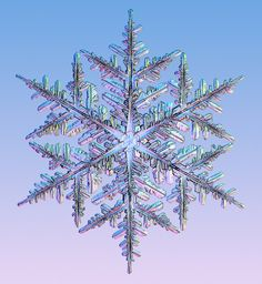 """According to Guinness World Records, the largest snowflakes on record were 15 inches (38 cm) in diameter and 8 inches thick. They fell on Fort Keogh, in eastern Montana on 28 January 1887. Nearby ranchers described the flakes as """"larger than mild pans"""" and measured them; """"8 inches thick"""". (Source: Wikipedia)"""