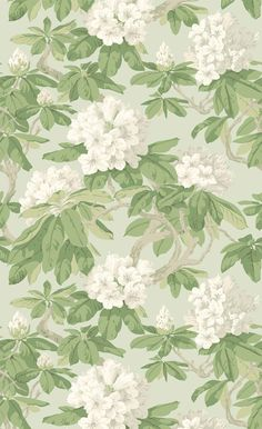 Buy Bourlie in Duck Egg, a feature wallpaper from Cole and Son, featured in the Folie collection from Fashion Wallpaper. Fashion Wallpaper, Home Wallpaper, Fabric Wallpaper, Pattern Wallpaper, Cole And Son Wallpaper, Feature Wallpaper, Floor Ceiling, Decoupage Paper, Image Shows
