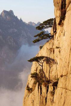 최고의 경치 황산 : 네이버 블로그 Chinese Landscape Painting, Fantasy Landscape, Landscape Photos, Landscape Paintings, Beautiful Paintings Of Nature, Beautiful Landscapes, Life Is Beautiful, Beautiful Images, Nature Photography