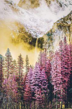 Yosemite National Park // Neohumanity
