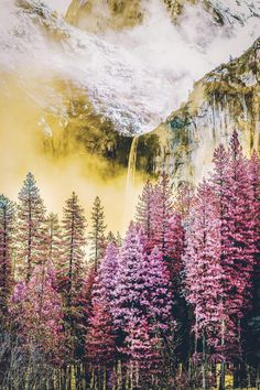 Yosemite National Park // Neohumanity