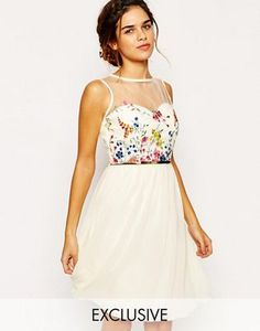 Little Mistress Mesh Top Skater Dress With Floral Embroidery Bust