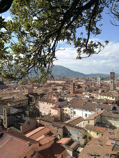 4 dagen hadden we om de omgeving van Castelnuovo Magra te bezoeken. Wat kies je nu op de grens van Ligurië en Toscane? Er is zoveel te zien!