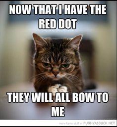 Red dot...