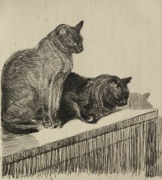 Théophile-Alexandre Steinlen (Swiss-French, b. Lausanne, Switzerland) - Deux Chats Sur Un Meuble, 1914 Drypoint And Etching On Beige Rives Laid Paper Interesting Drawings, Etching Prints, Black And White Illustration, Animal Totems, Here Kitty Kitty, Vintage Cat, Art Graphique, Cat Drawing, Museum Of Fine Arts