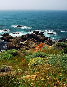 Sonoma California Coastline by OceanRudy, via Flickr