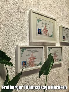 Alle Mitarbeiterinnen der Praxis sind mehrfach in Bangkok geschult und zertifiziert worden http://www.freiburger-thaimassage-herdern.de/index-4.html