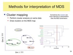 Methods of interpretation of Multidimensional Scaling