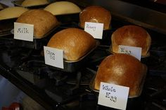So what is a glaze? This can affect the finished look of your bread and the taste depending on the glaze you choose. I have the details. Bread Machine Recipes, Bread Recipes, Cooking Recipes, Savoury Recipes, Baking Tips, Bread Baking, Egg Wash, Bread Rolls, Quick Bread