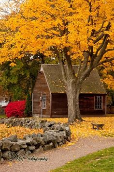 Autumn, Saugus, Massachusetts