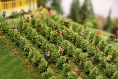 Model Train Layouts, Miniature Crafts, Model Trains, Vineyard, Scenery, Home And Garden, Miniatures, Locs, Outdoor